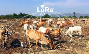 LoRa website smart agriculture quantified agriculture
